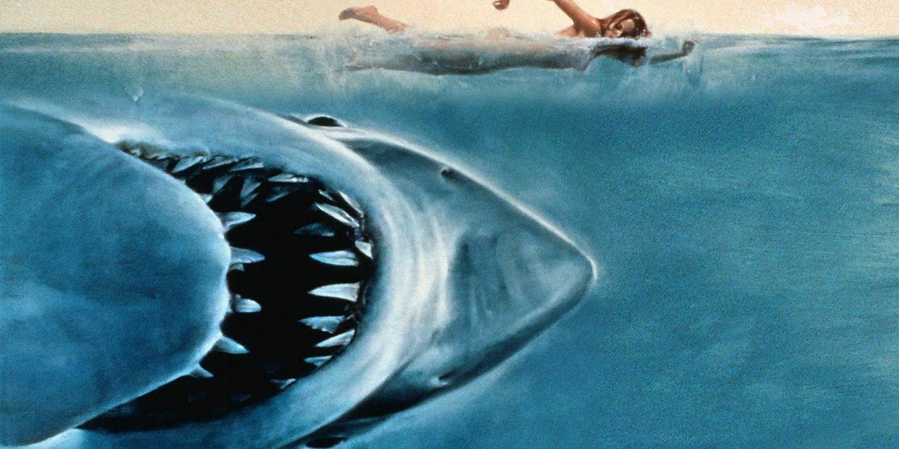 Top 5 Shark Horror Movies