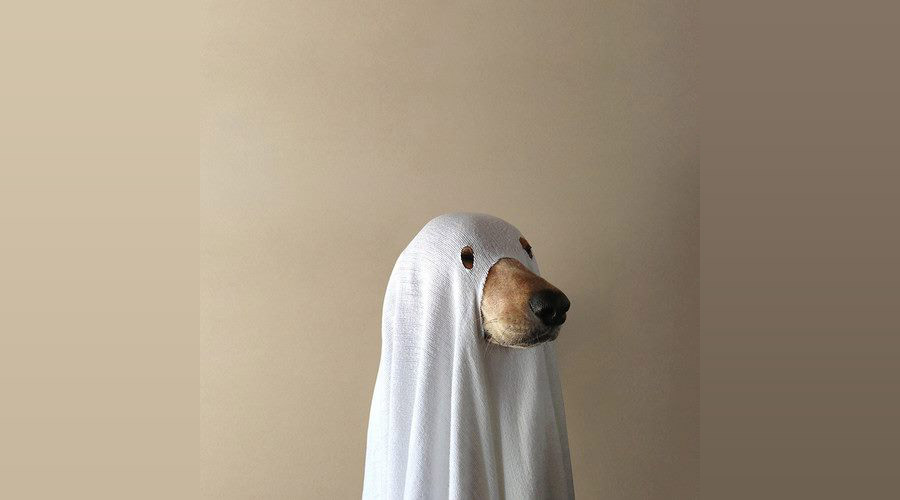 Cheap Halloween Costume Ideas & Cheap Halloween Costume Ideas | Heaven of Horror