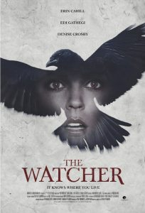 the watcher 2016 poster - netflix horror review