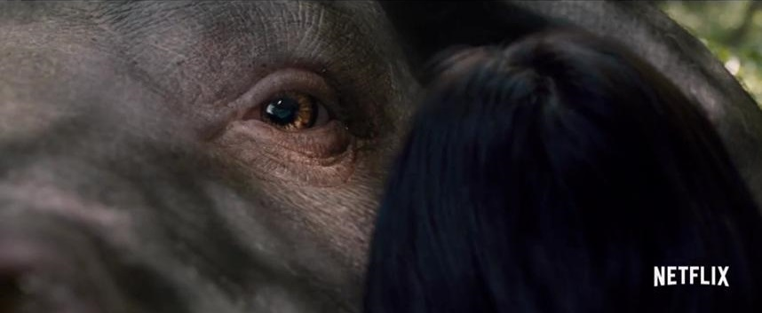 Okja 2017 review - Netflix sci-fi monster movie