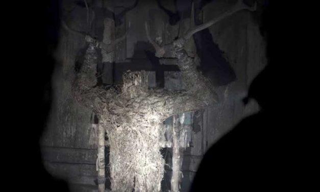 The Ritual (5/5)