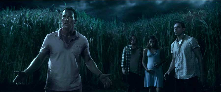 In the Tall Grass (2019) Review – Netflix Horror